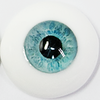 real custom4 ▶ 16mm